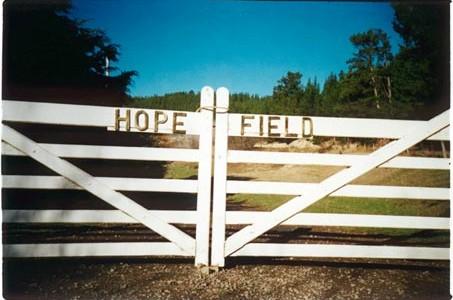 hope_field