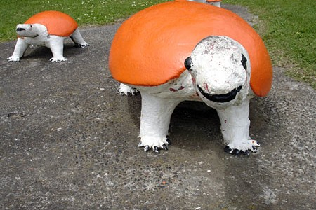 orangeturtles