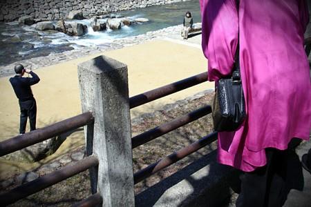 purple_coat