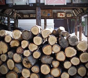 temple_wood